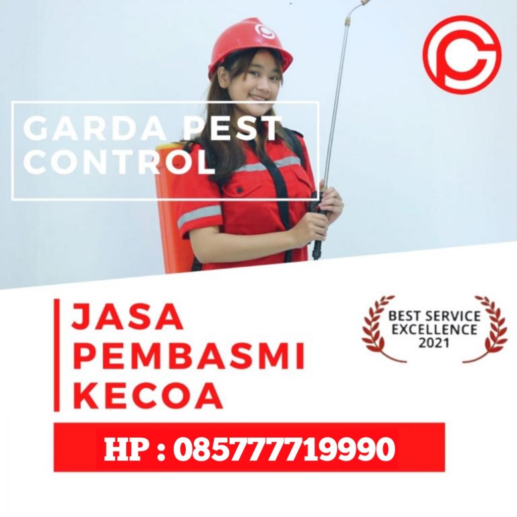 jasa Pembasmi Kecoa Di Jakarta